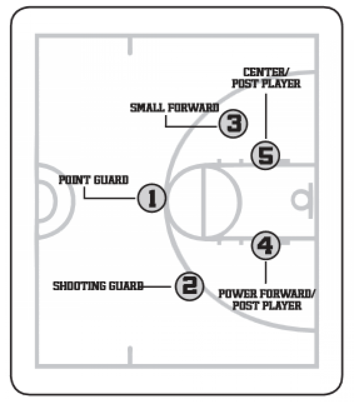 basketball positions   amherst youth basketballpoint guard  player    operates around the perimeter  calling plays and directing the offense  the point guard should be skilled at ball handling and